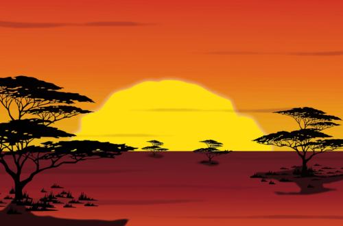 Article : Le devoir de rêver l'Afrique